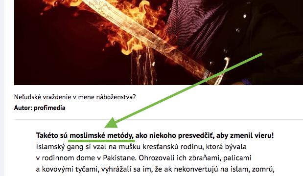 Pluska.sk zverejnila správu o znásilnení a mučení