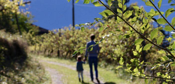 Turecký otec postavil 4-kilometrovú horskú cestu, aby jeho dcéra mohla chodiť do školy